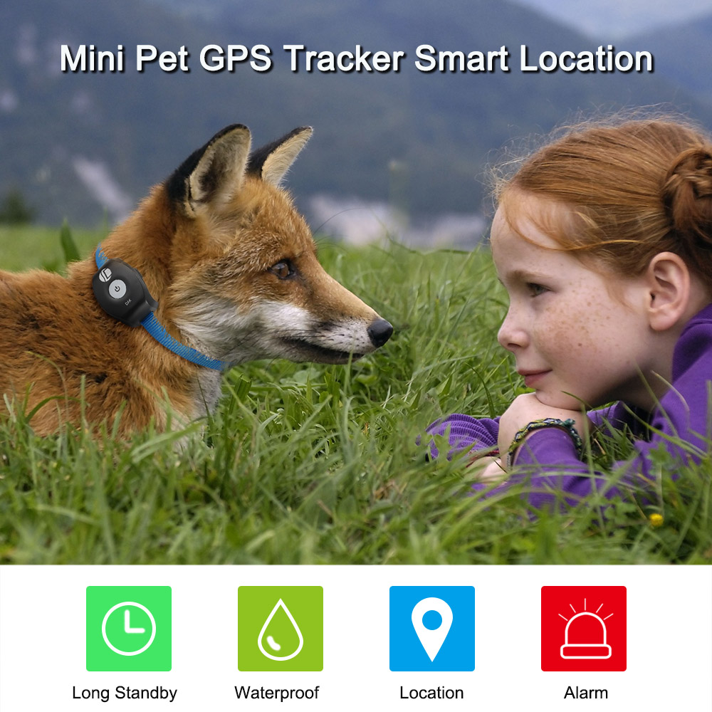 Mini Pet GPS Tracker Waterproof Smart GPS Tracker With Collar For Pets Cat Dog GPS+LBS Location Free APP LED Indicator(China)