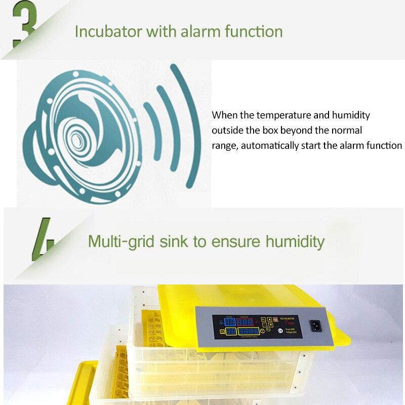 Egg Incubator (6)