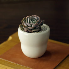 6.2*6.2*6cm Simple white meat more creative mini ceramic pot pots round small gourd free shipping