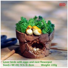 ED original quality design magic story garden ornament lover birds flowerpot bonsai outdoor decoration(China)