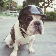 Pet Dog Ridding Caps Helmet ABS Plastic Doggie Puppy Bike Motorcycle Cosplay Hat Drop Ship(China)