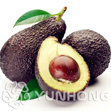 Promotion 10pcs New Rare Green Avocado Seed Very Delicious Pear Fruit Easy Grow For Home Garden Free Shipping Rose As Gift