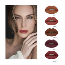 2017 NEW Brand 5 Color Matte Liquid Lipstick Set Nude Brown Chocolate Rose Lipstick Kit Lip Gloss Matte Lips Waterproof Pudaier
