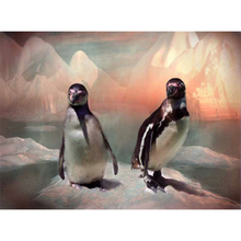 penguins on the iceberg diamond paintings By numbers rhinestone needlework round Diamonds embroidery mosaic Wall picture DW435