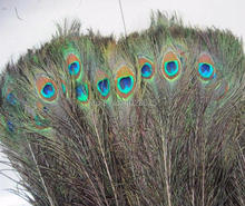100pcs/lot Peacock Tail Feathers Natural 10-12inch Long For Bouquet DIY Decoration,Peacock Feather