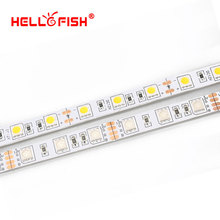 Hello Fish LED strip DC12V flexible LED lighting light LED tape 5 meter 300 led 5050chips RGB/ white/warm white/blue/red/yellow(China)