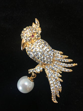 Newly Designed Shining Parrot Rhinestone Brooch Parrot Bird Pins Men and Women's Jewellery Accessories Wholesale 10pcs/Lot(China)