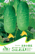 1 Original Pack 20 Seeds / Pack Japan Cucumber Seeds, good merchandise Vegetable seeds(China)