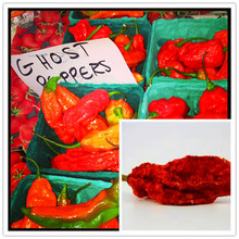 50 pcs/ bag India ghost pepper seeds + 200pcs purple carrot seeds as gift Hot Peter Pepper chili seeds bonsai for home & garden