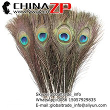 Manufacturer in CHINAZP Factory 50pcs/lot 25~30cm Length Beautiful Natural Full Eye Peacock Tail Feathers for DIY Decorations