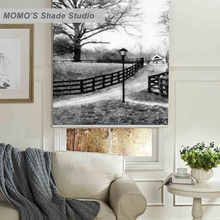 MOMO 100% Thermal Insulated Blackout Fabric Custom Scenic Window Curtains Roller Shades Blinds,PRB set224-226
