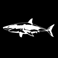 GREAT WHITE SHARK VINYL DECAL CAR WINDOW WALL LAPTOP BUMPER STICKER FISH JAWS(China)