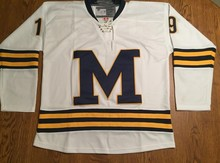 MICHIGAN WOLVERINES WHITE #19 DYLAN LARKIN Hockey Jersey Embroidery Stitched Customize any number and name Jerseys(China)