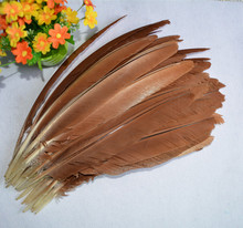 New! Free shipping sale 20 unids / lot birds beautiful eagle feathers, 35 - 40 cm, diy decorative ornaments, feather fan subset(China)