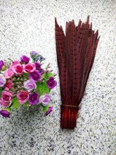 Wholesale perfect 10pcs high quality natural Male Pheasant feathers 14-16inch/35-40cm Decorative diy red(China)