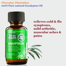 Thursday Plantation Eucalyptus Oil 100% Pure50ml relieves cold& flu symptoms, mild arthritic, muscular aches &pains Clean wound(China)