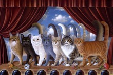 Braldt Bralds lovely cats stage performance PDW220 fabric poster print (frame available) for wall art room decor home decoration(China)