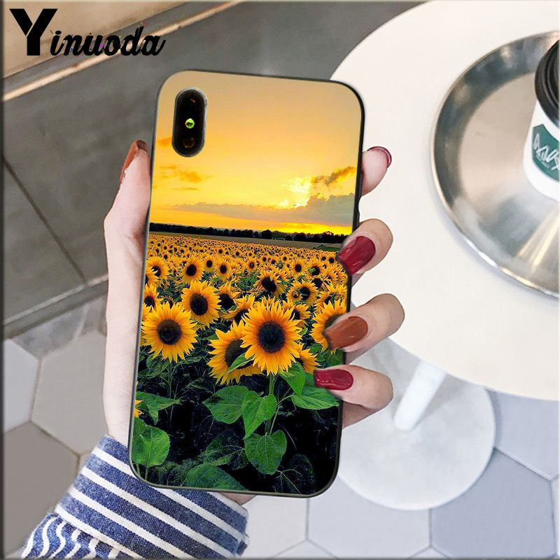 Cute Summer Daisy Sunflower Floral Flower