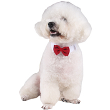 Easy to use Dog Cat Pet Puppy Kitten Toy Bow Tie Necktie Collar Cosplay Clothes Accessories(China)
