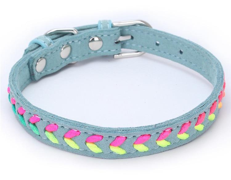 dogs collar (6)