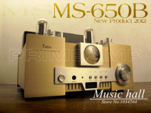 YAQIN MS-650B 845*2 Vacuum Tube Single-ended class A tripolar Merged Hi-end Tube Integrated Amplifier with remote control(China)