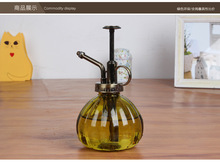 Vintage Pressure Sprayer Glass Bottle Watering Cans Pot For Succulent Plants Bonsai Flower Watering Pot Glass(China)
