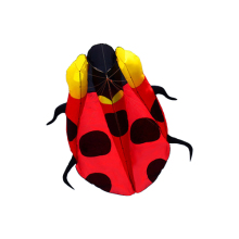 New Arrive Outdoor Fun Sports 2.3m Ladybug Kite / Animal Software Kites With Handle & Line Good Flying(China)