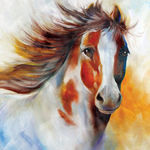 Modern Wall Art 100% Handpainted Abstract Pictures Handsome Pony Pictures on Canvas Horse Oil Paintings for Wall and Home Decor(China)