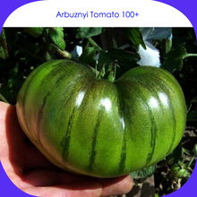 Rare Heirloom Arbuznyi Big Green Tomato with Dark Green Line Organic Seeds, Professional Pack, 100 Seeds / Pack, Sweet Vegetable