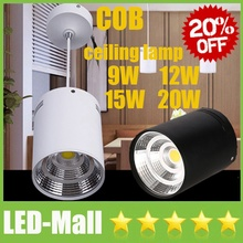 Wholesale Pendant Lamp CREE 9W 12W 15W 20W LED COB Downlights Power Supply 110-240V Fixture Ceiling Down Lights Lamps CE SAA UL