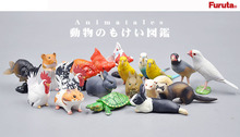 Japan original genuine animals pets mink Hamsters parrot rabbit goldfish turtle rooster extinct collectible figures for children