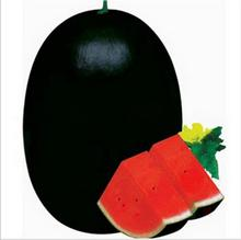 50 PCS Giant Watermelon Seeds Black Tyrant King Super Sweet Watermelon organic fruit seeds plant for home garden