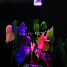 10W E27 5x2w 3Red + 2Blue LED Grow light for flowering plant and hydroponics system Free Shipping 1pcs/Lot(China)