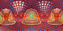 "Alex Grey  48""x24""    25""x13""  Trippy Alex Grey Wall Poster Print Home Decor Wall Stickers poster Decal--15"