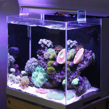 Marine LED light coral SPS LPS aquarium sea reef tank white blue Chihiros brief style(China)