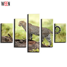 5 Panel African Leopard Canvas Art Canvas Printing Picture Cuadros Modern Printed Home Decor For Living Room Unframed(China)