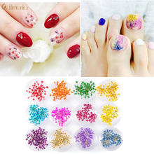 10 Boxs Lavender Dried Flowers Nail Art DIY Preserved Flower With Bottle 3d Small Nail Art Decorations For Manicure Tools