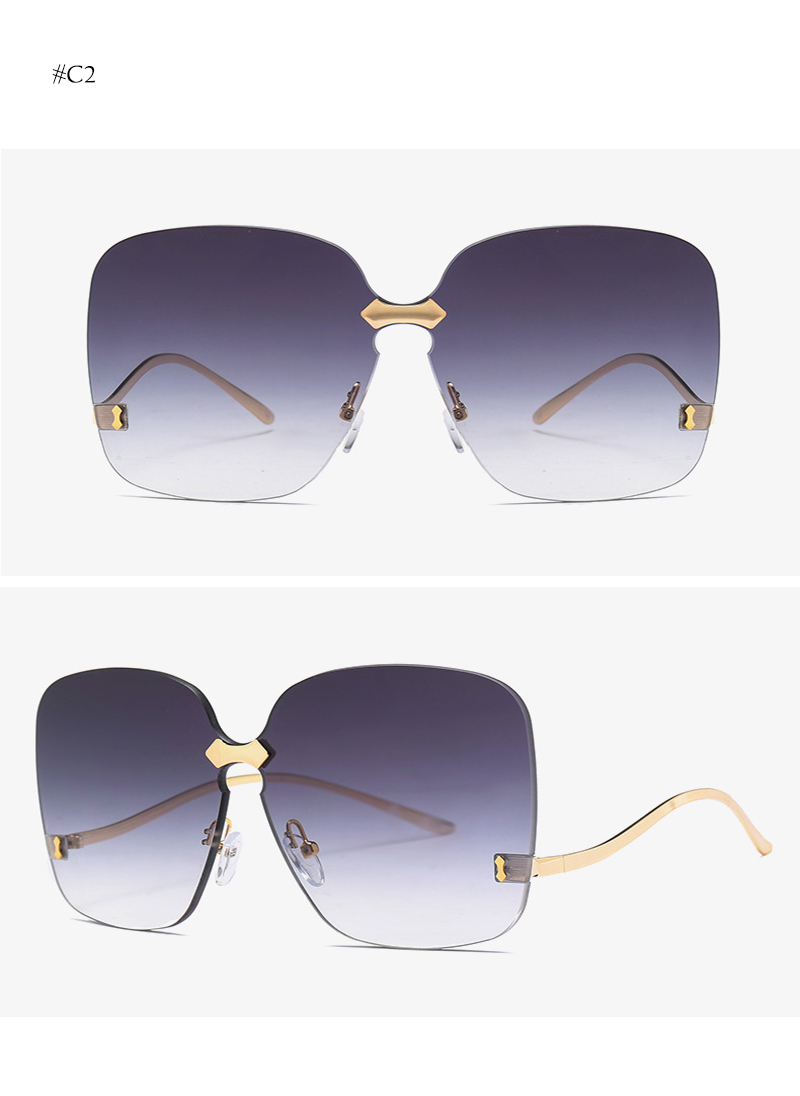 oversized sunglasses (10)