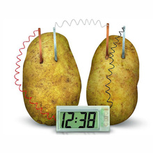Funny Educational DIY Material For Children Kids Potato Clock Novel Green Science Project Experiment Kit Lab Home School Toy()