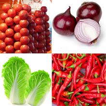 400pcs Tomato&Giant Onion&Pepper&Cabbage Seeds Healthy Vegetables food plant seed (MIxed Sale Big Discount) for home garden