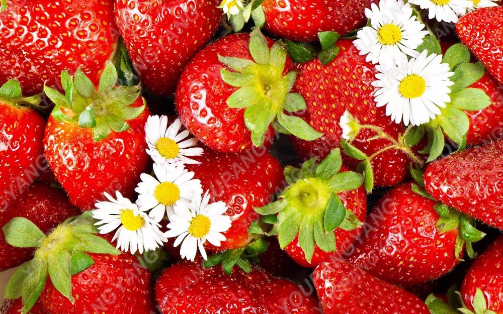 Strawberry_wallpaper_017