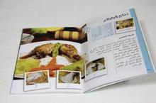 20pages catalogue ,500pcs and z fold brochure ,500pcs printing ,free shipping to USA