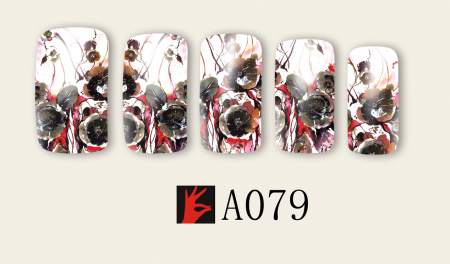A079(1)