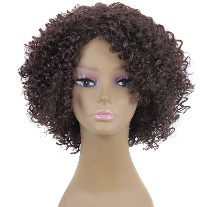Afro Kinky Curly Wigs For African American Short Brown Cosplay Wig High Quality Wigs For Black Women Curly Synthetic Wig<br><br>Aliexpress