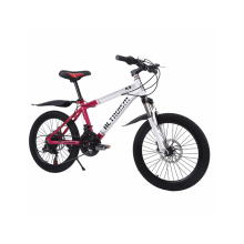 ALTRUISM K9 20 Inch 21 Speed Aluminum Double Disc Brake Bike Children Bicycle(China)