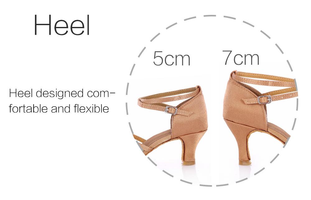 Latin Dance Shoes For Women Salsa Tango Ballroom Dance Shoes High Heels soft Dancing Shoes 5 7cm Heel zapatos baile comfortable (8)