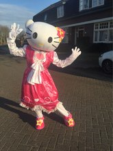 High quality of Hello Kitty Mascot Costume , Terms head, No cardboard Free shipping(China)