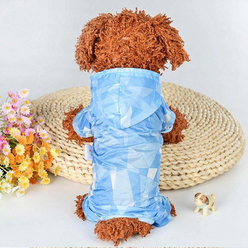 sun protection dog -