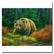 Diamond animal Embroidery Brown bears DIY picture of rhinestones crystals icon Diamond mosaic pattern beadwork cross-stitch kits(China)
