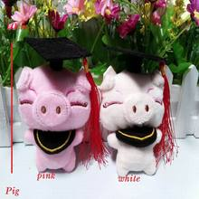 6 pcs/lot, Plush doll graduation cartoon character keychain; stuffed graduation bear, graduation KT, 13 styles to choose